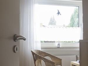 Appartement calme dans Munster Handorf