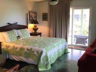 Villa avec jardin, 1 chambre